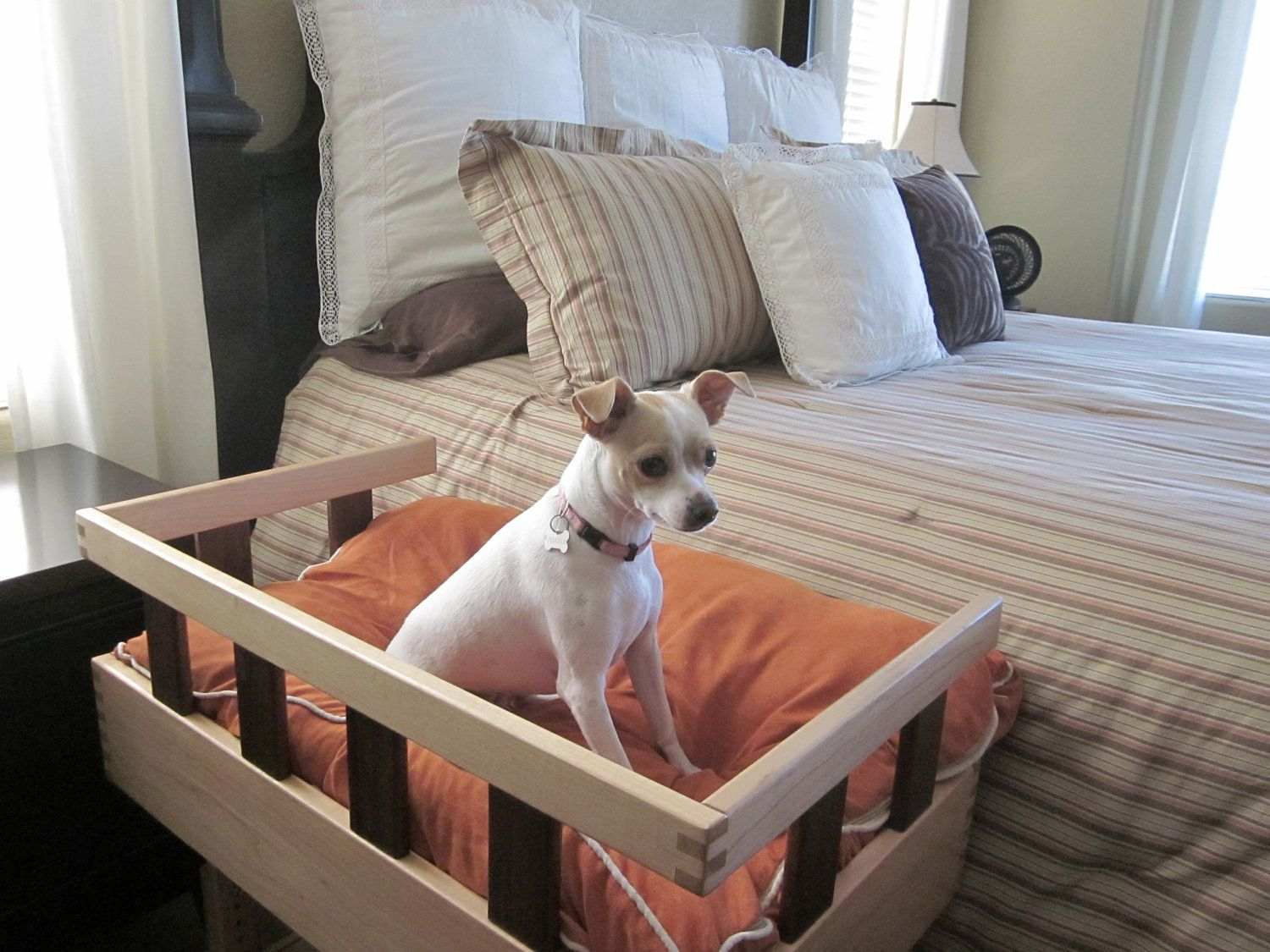 SALE PRICE Standard Wooden Pet Bed Height of standard box