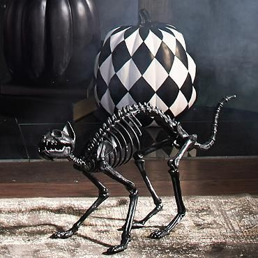 Halloween Decor- Black Skeleton Cat °For the Cave° Pinterest - halloween decorations skeletons