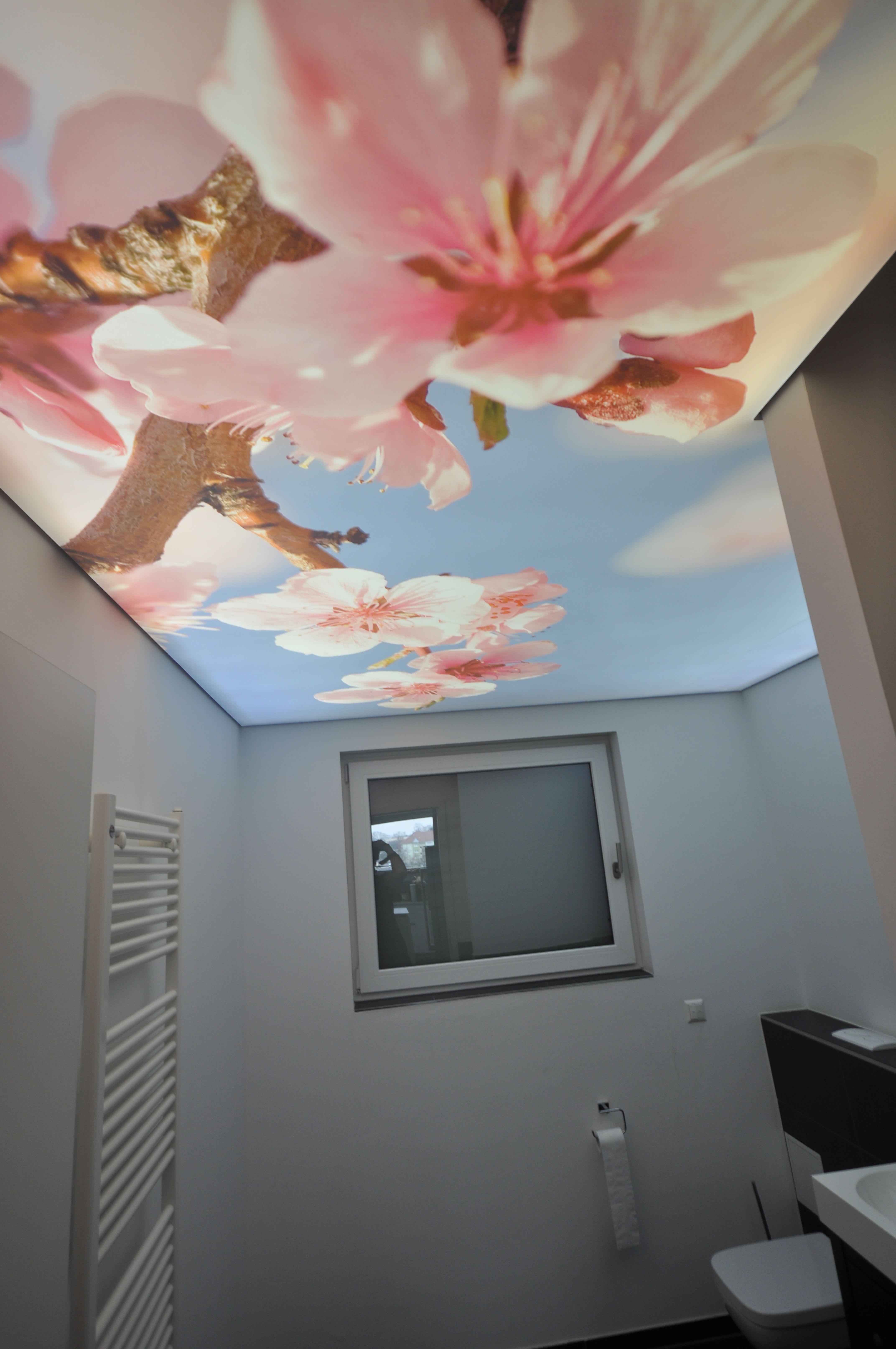 Spanndecke Im Bad Spanndecken Decke Lichtwande