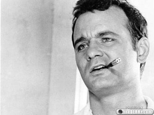 BILL murray. living legend, deadpan comedic genius. #famous #actor