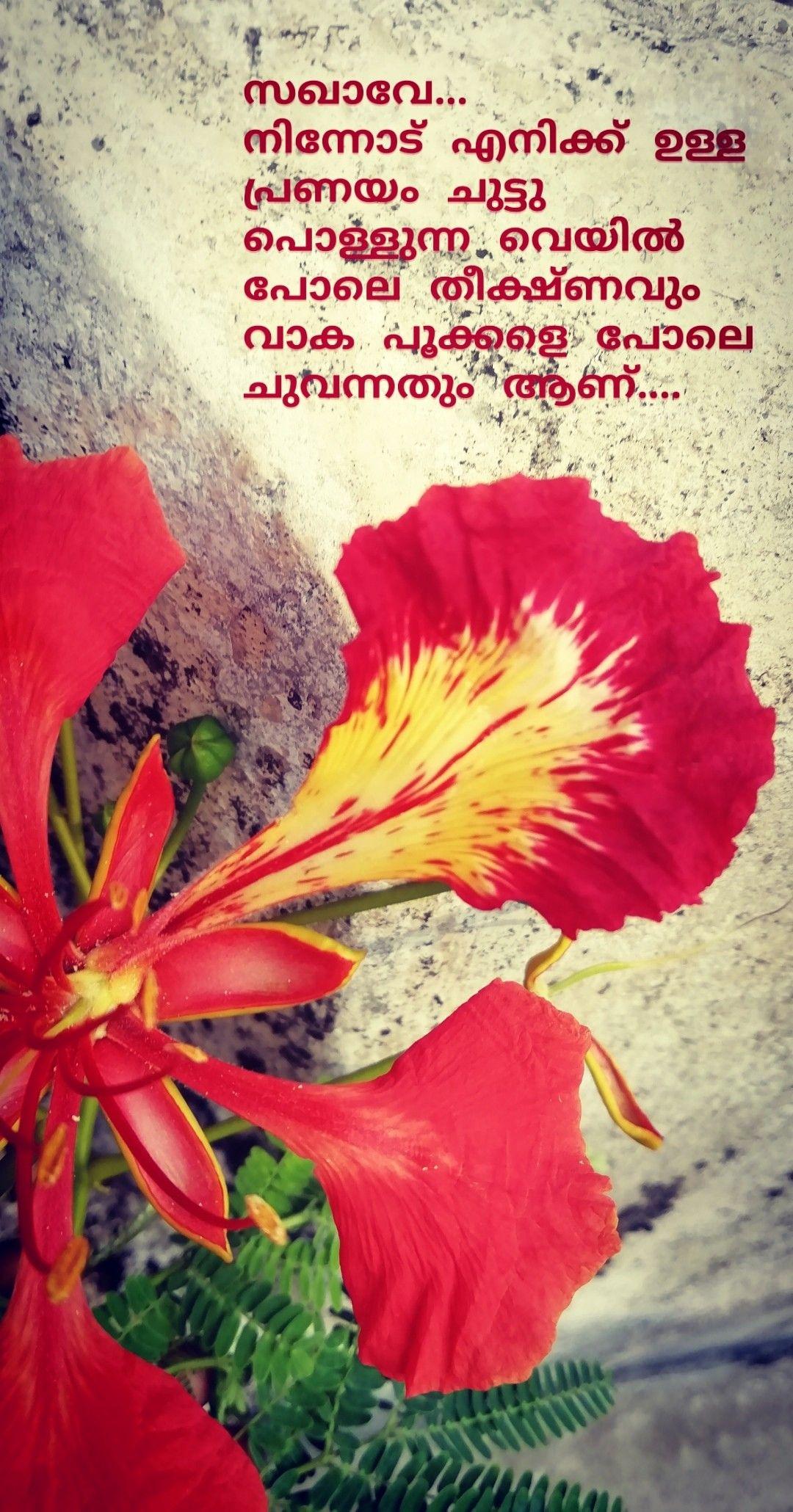 Love Quotes Gulmohar Malayalam Communist Quotes Life Quotes