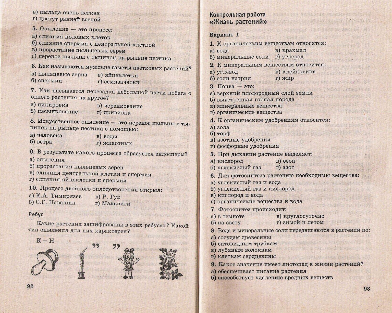 Тест по биологии 6 класс