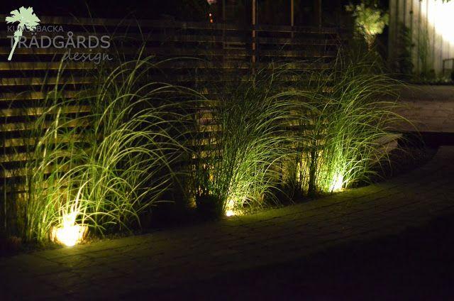 Fantastisk trädgårdsbelysning   Trädgårdsidéer i 2019   Belysning trädgård JX-51