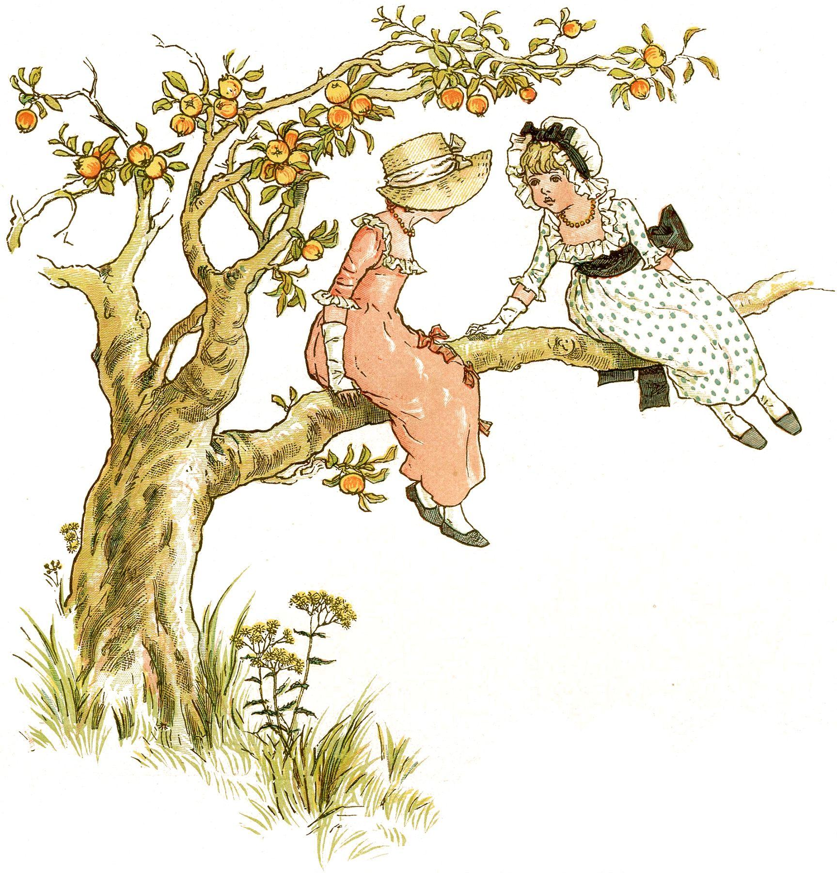 Sweet Children In Apple Tree Picture