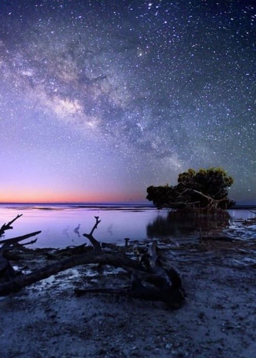 Bring Me Here And I Ll Love You Forever Night Sky Photography Sky Photography Night Skies
