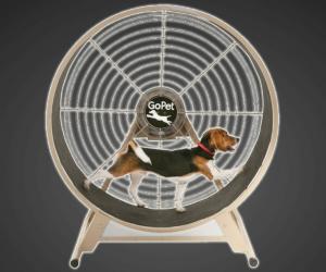 Dog Exercise Wheel Overweight Dog Dog Enclosures Exercise Wheel