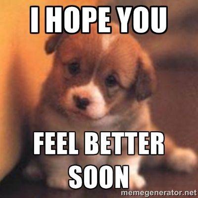 9e90bd8936192c776d36d9ce254243d2 hope you feel better images hope you feel better puppy meme