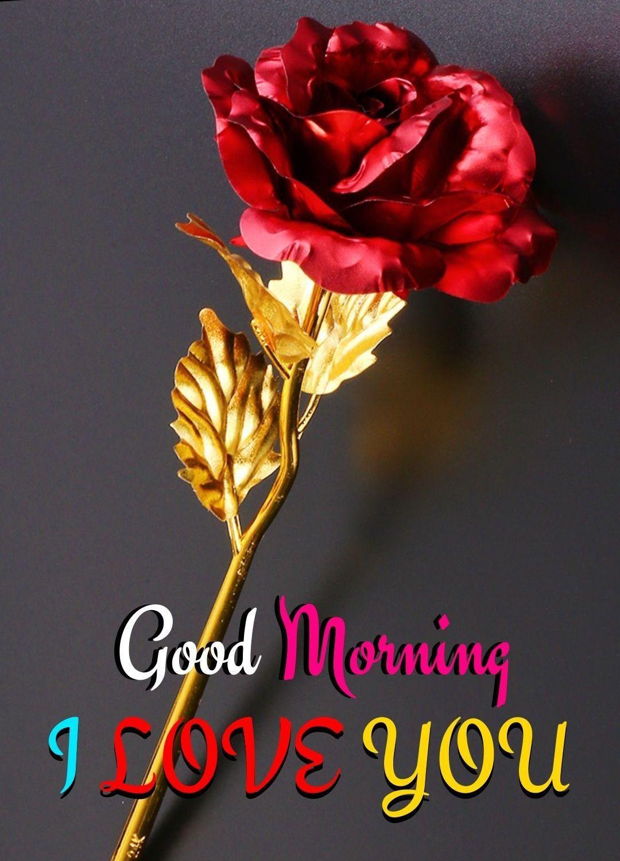 Good Morning Flower Good Morning Love Gif Good Morning Flowers Good Night Love Images