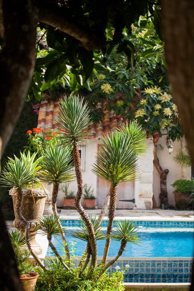Tropical Garden Design At Villa Mimine By Bali Landscape Company Unique Garden Design Companies