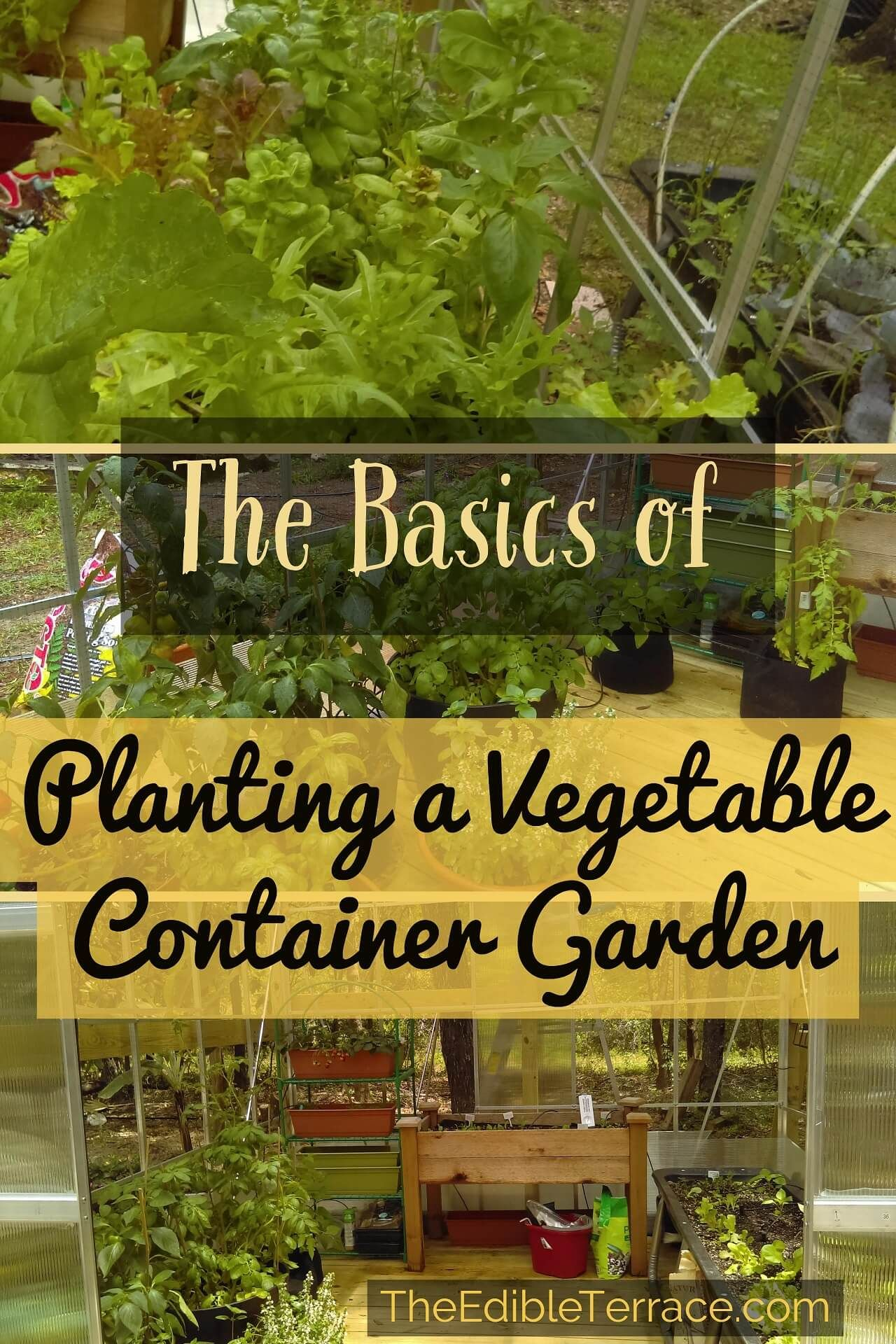 Easy Steps To Growing Vegetables In A Small Space 400 x 300