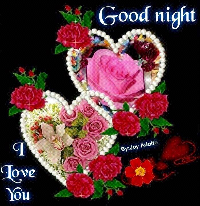 good night i love you love pinterest good night night wishes