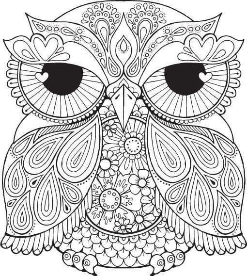 animaux Bonjour, Owl and Adult coloring - copy baby owl coloring pages for adults