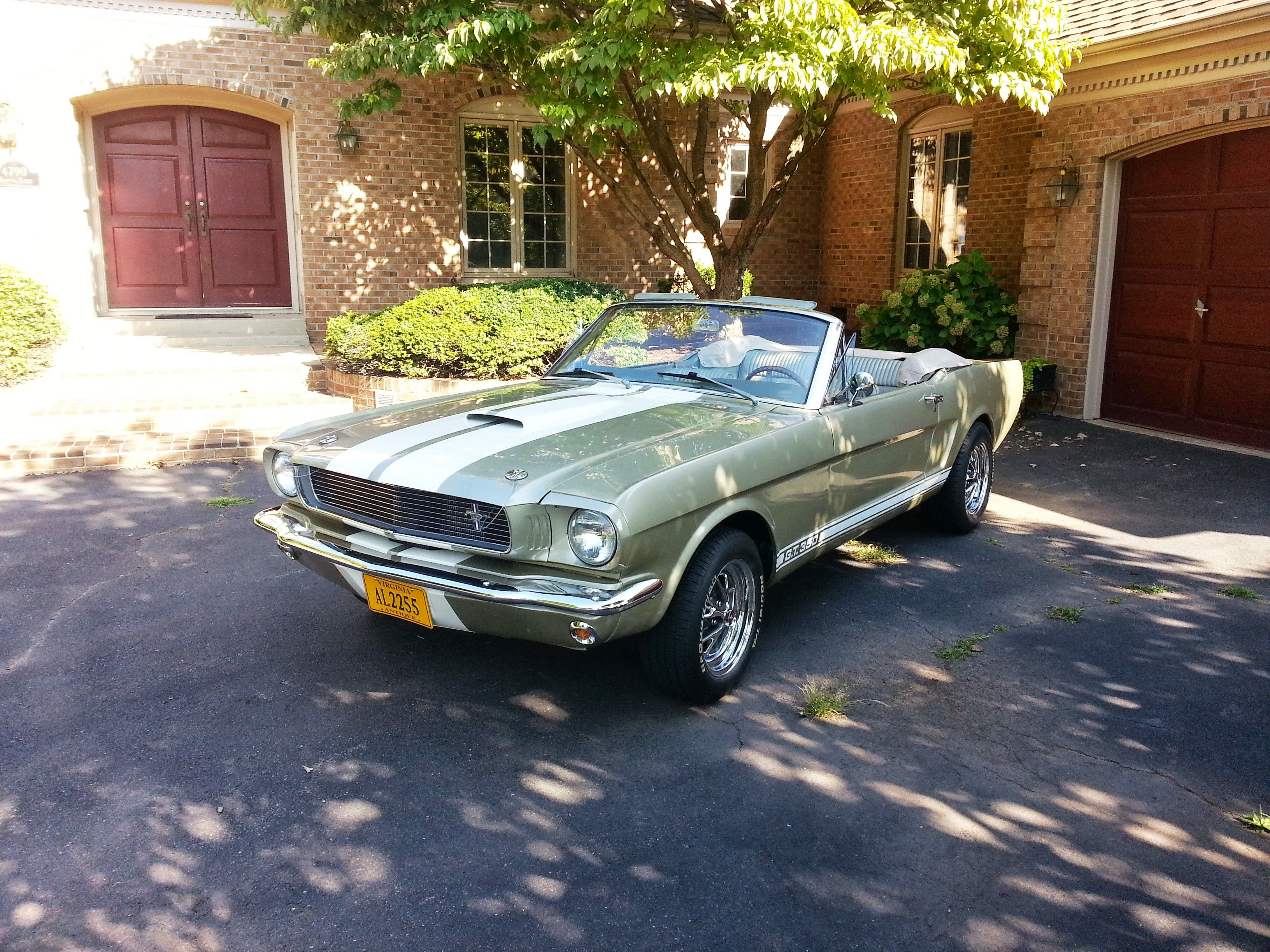 1966 Mustang Convertible GT350 (Clone) Engin