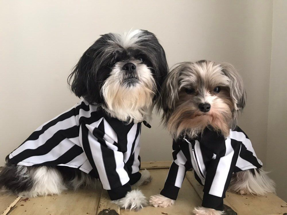 Excited To Share This Item From My Etsy Shop Referee Dog Shirt