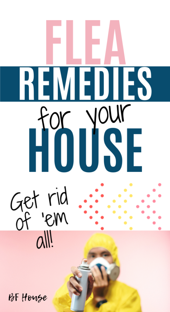 The Best Way To Get Rid Of Fleas In The House – Babies&Fur House -   18 how to get rid of fleas in house ideas
