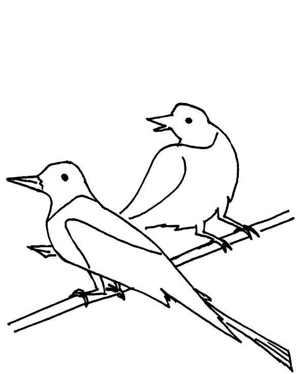 Pin By Netart On Seagull Coloring Pages Coloring Pages Coloring Pictures Color