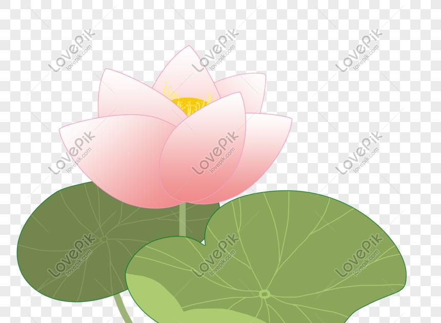 Gambar Bunga Teratai Kartun Bunga Teratai Disini Anda Akan Admin Perlihatkan Mengenai Koleksi Terbaik Bunga Teratai Yang Je Gambar Bunga Bunga Teratai Bunga