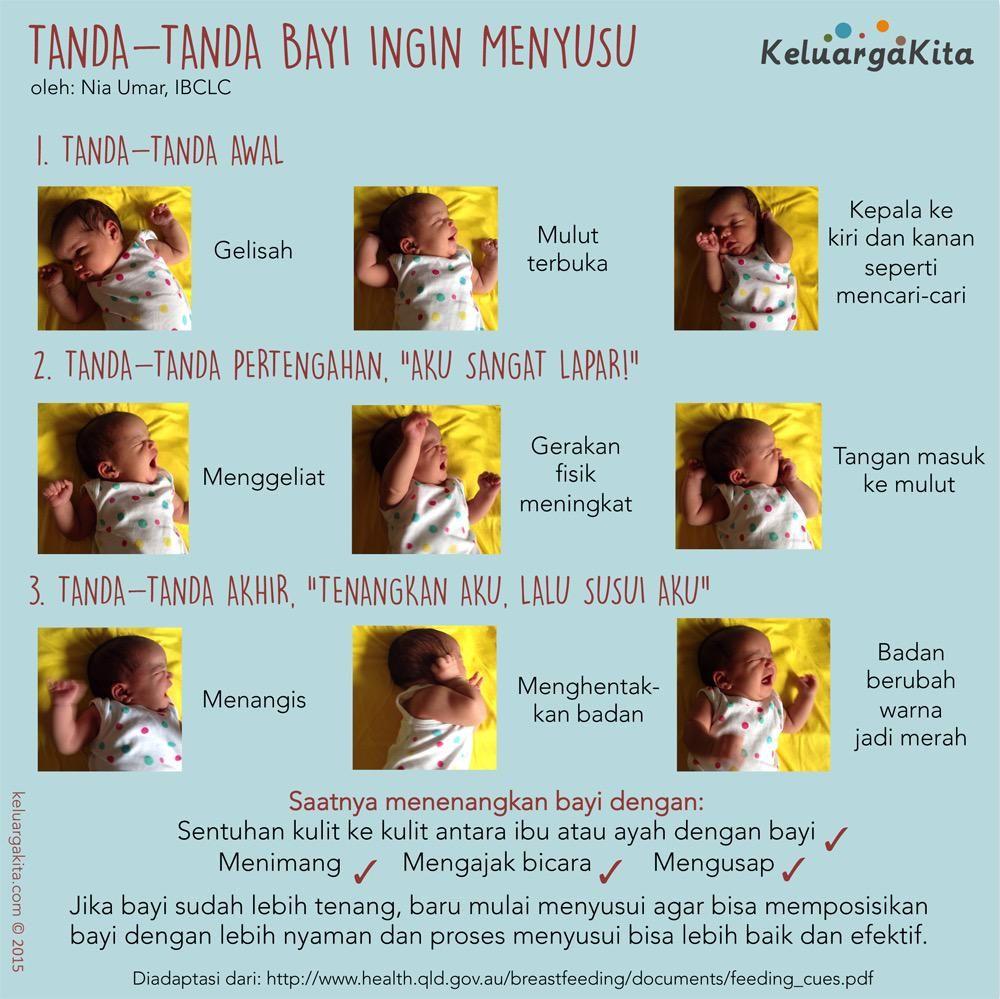 Tanda Tanda Bayi Ingin Menyusu Oleh Housniati Poster ASI