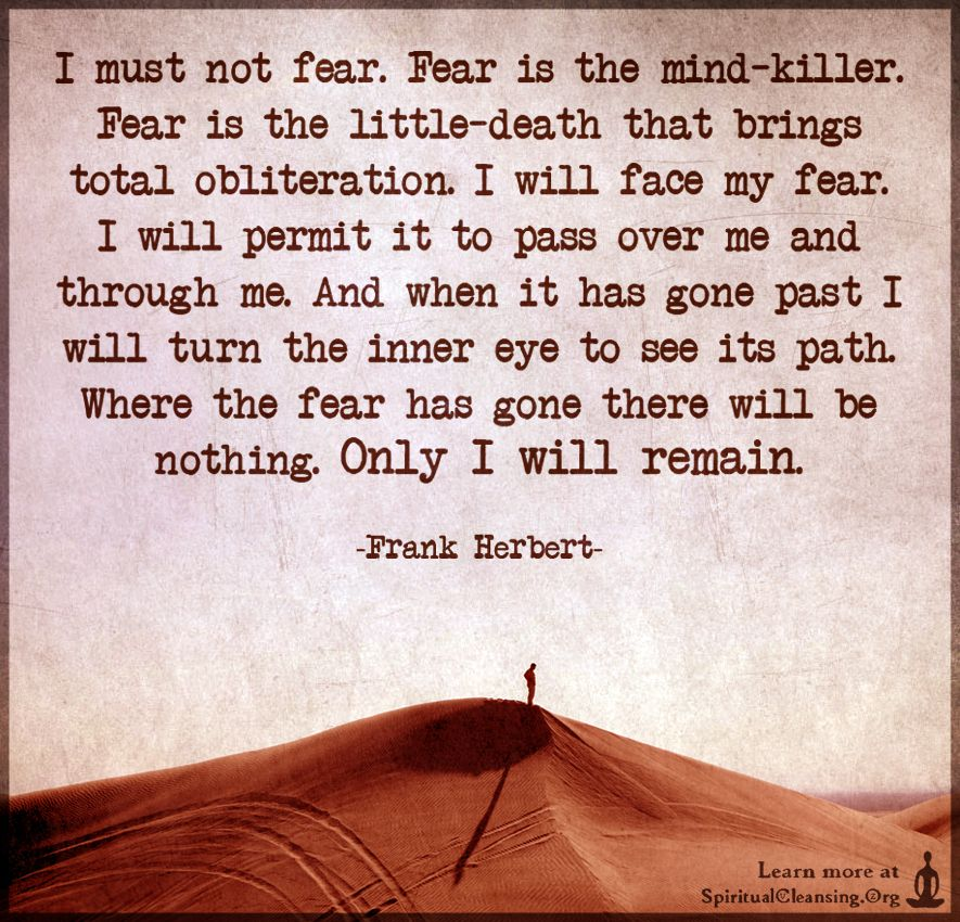Image result for i will not fear fear is the mindkiller