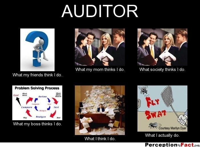 Auditor   What People Think I Do What I Really Do  Perception