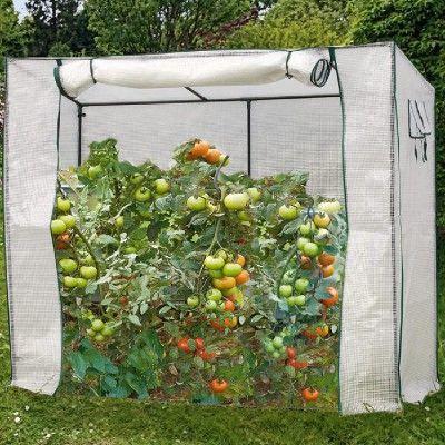 Equipement Potager Pas Cher Gifi Serre A Tomate Poubelle De Jardin Amenagement Jardin