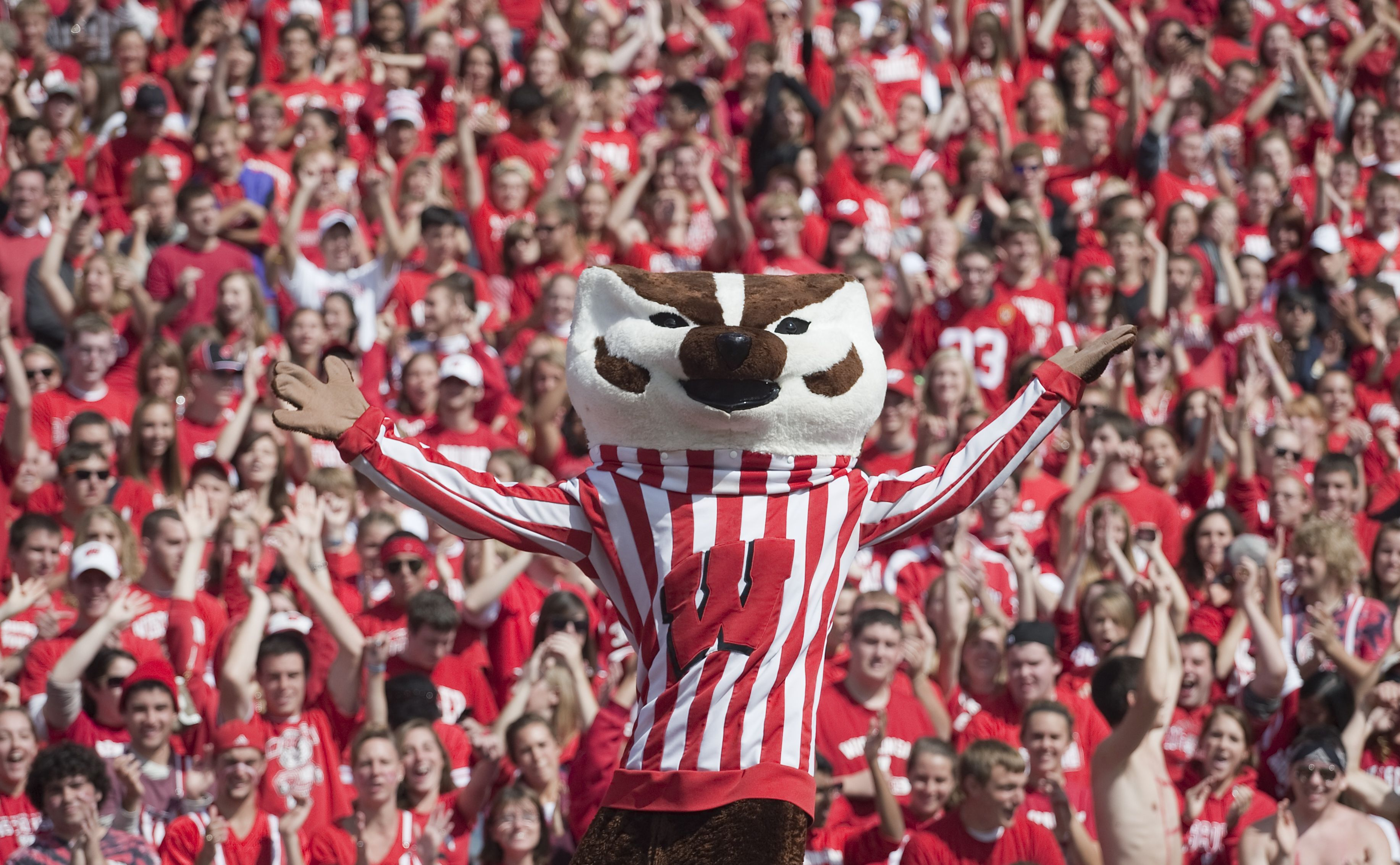 Wisconsin Badgers Bing Images Wisconsin Badgers Football Badger Football Wisconsin Badgers