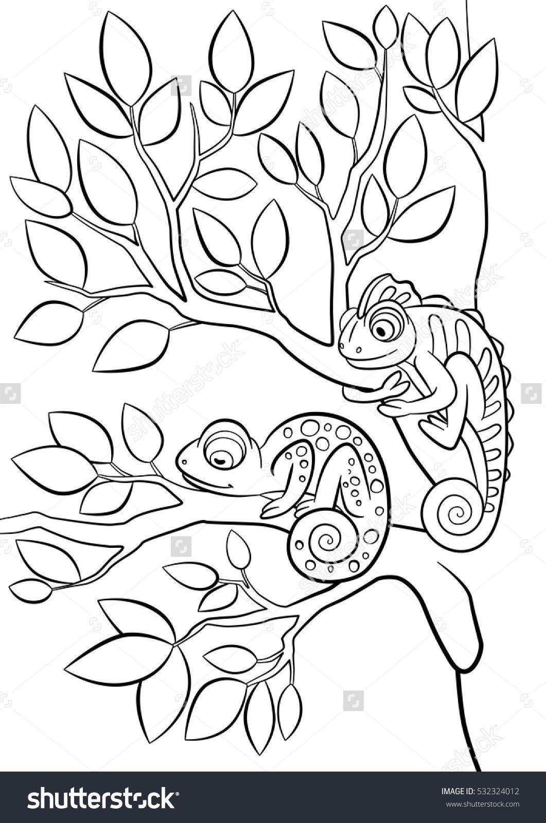 Pin Op Kameleon S Een Kleur Van Zichzelf