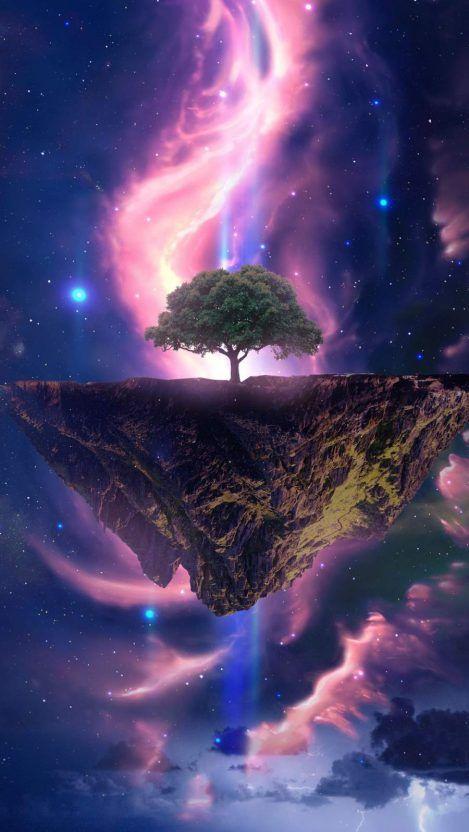 Dream Tree iPhone Wallpaper - iPhone Wallpapers
