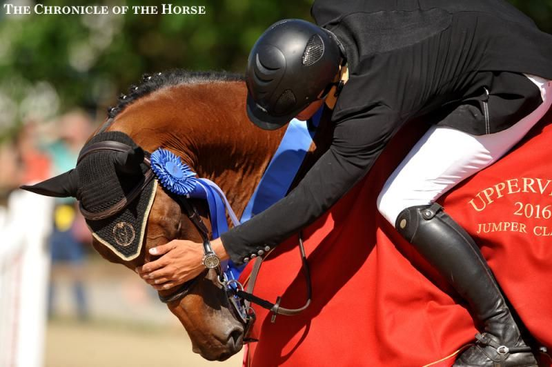 Photos & Video   The Chronicle of the Horse