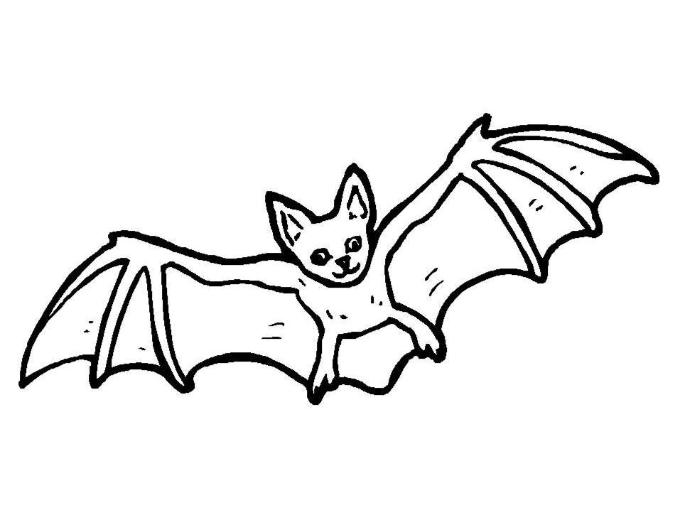 Bat Colouring Page | Bat coloring pages, Halloween ...