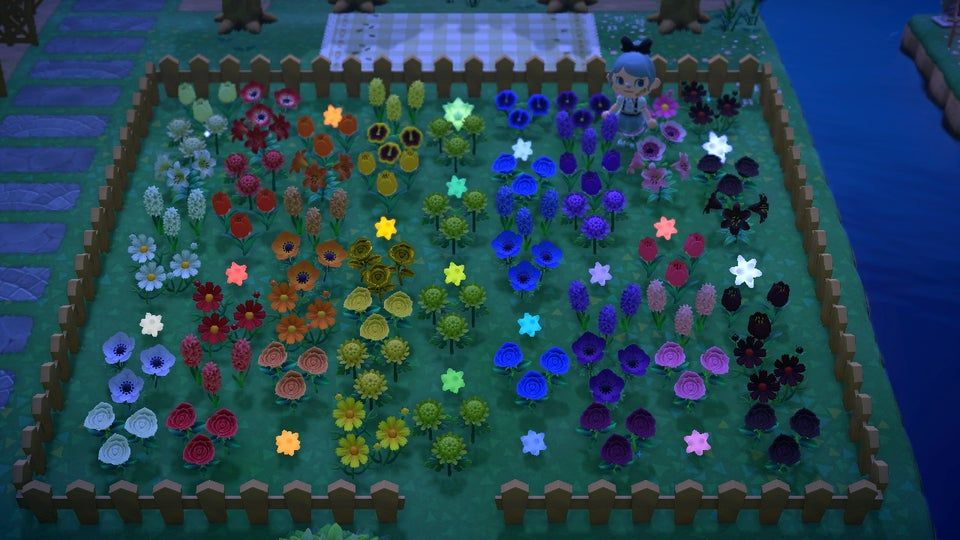 finally finished my rainbow garden!