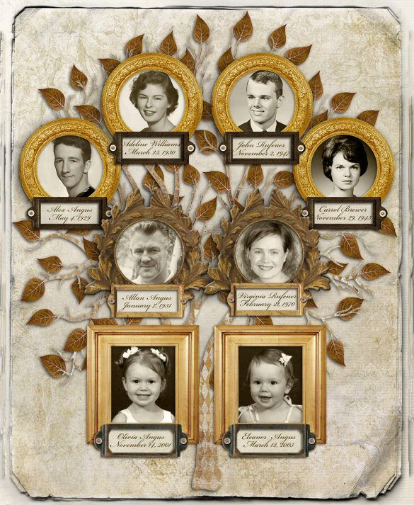 3 Generation Family Tree Template 10 Free Sample Example Format
