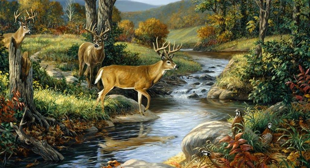 Wall mural nature wall mural are unique and most for Deer mural wallpaper
