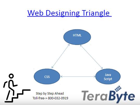 Basic Website Designing Component In Brief Basic Website Web Design Browser Internet