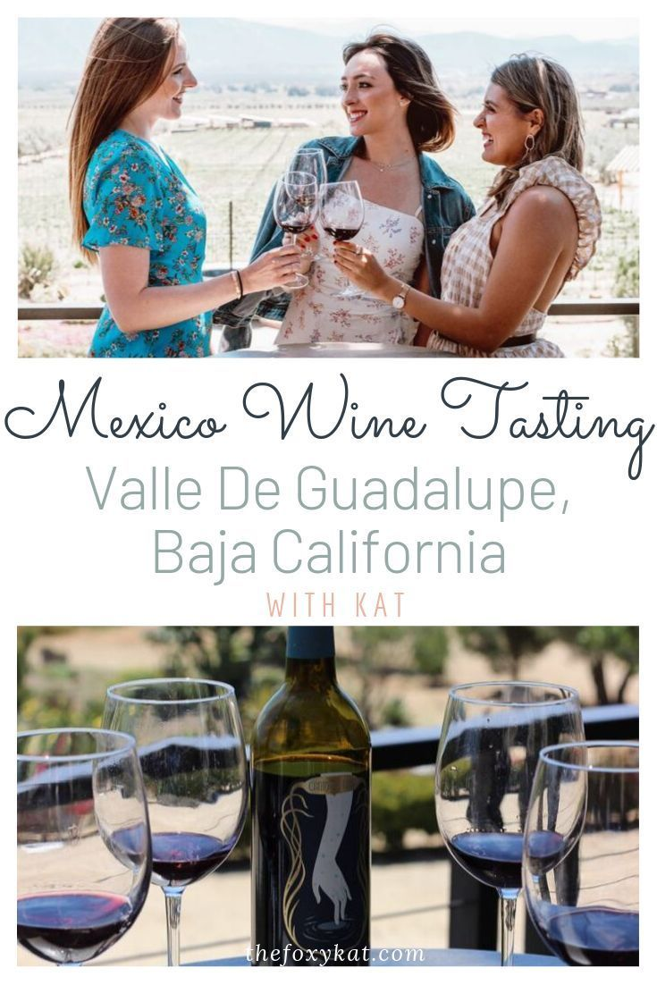 Mexico Wine Tasting in Valle De Guadalupe, Baja California. On Friday, we arrive... - #arrive #california #friday #guadalupe #mexico #tasting #valle - #WineTasting