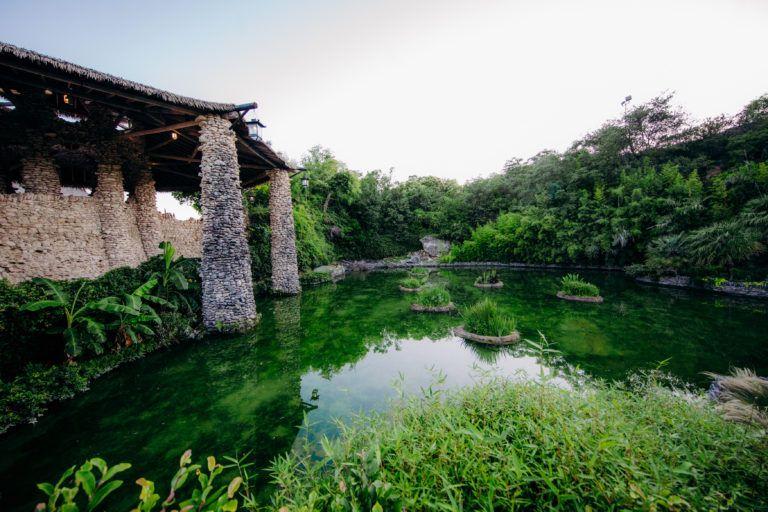 Japanese Tea Garden San Antonio Parks Foundation in 2020