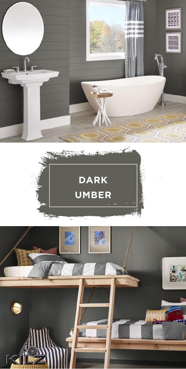 Dark Umber by KILZ Complete Coat Paint