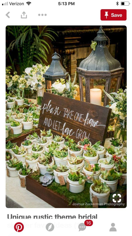 Pin by Shanice @ City of Creative Dreams on Dreamy Wedding Favors in 2018 Pinterest  ~ 01163735_Sukkulenten Gastgeschenk Hochzeit