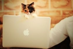 The youngest blogger