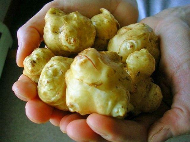 Овощ, который лечит сахарный диабет, псориаз, остеохондроз и не ...