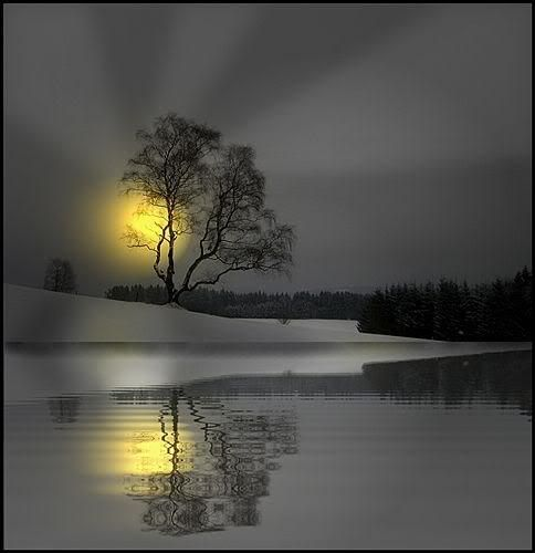 Water Reflection Photography Black And White Best 25+ Water ...