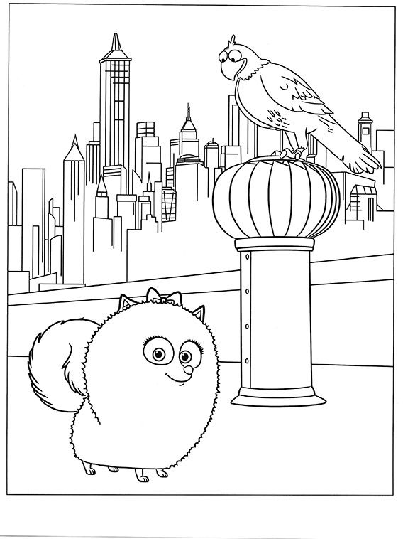 The Secret Life Of Pets Coloring Pages 40 Dibujos Faciles