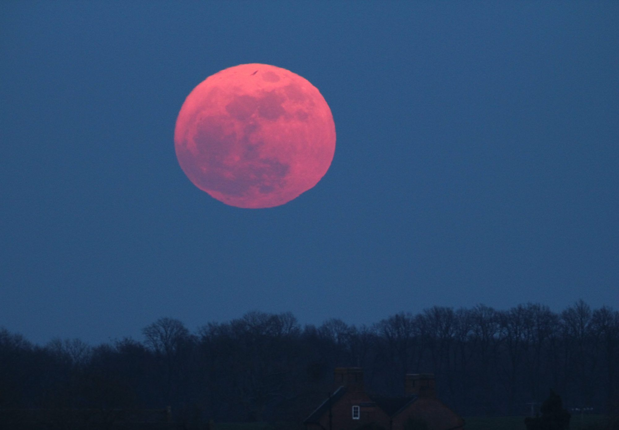 A Pink Supermoon Will Be Visible in the Sky This April   Pink moon ...