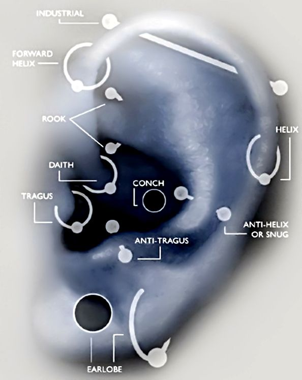 Improved image ear piercing map now names are more readable improved image ear piercing map now names are more readable ccuart Gallery