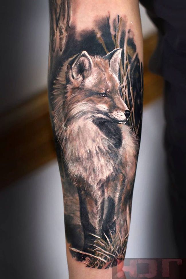 Fox Arm Tattoo Tatuajes Tatuaje De Zorro Tatuajes Brazo Y
