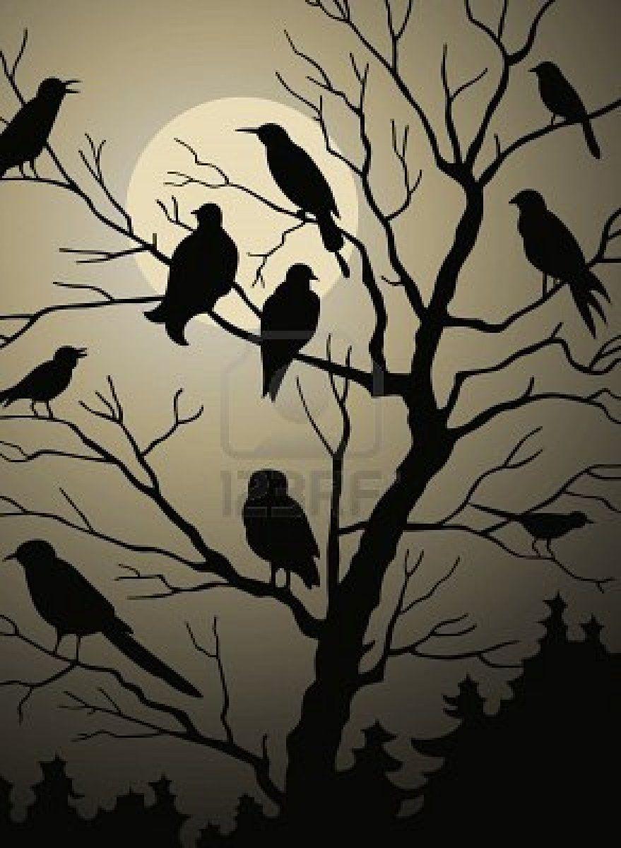 Pajaros En El Arbol En El Bosque De Noche Bosque De Noche Silueta De Bosque Dibujo Bosque