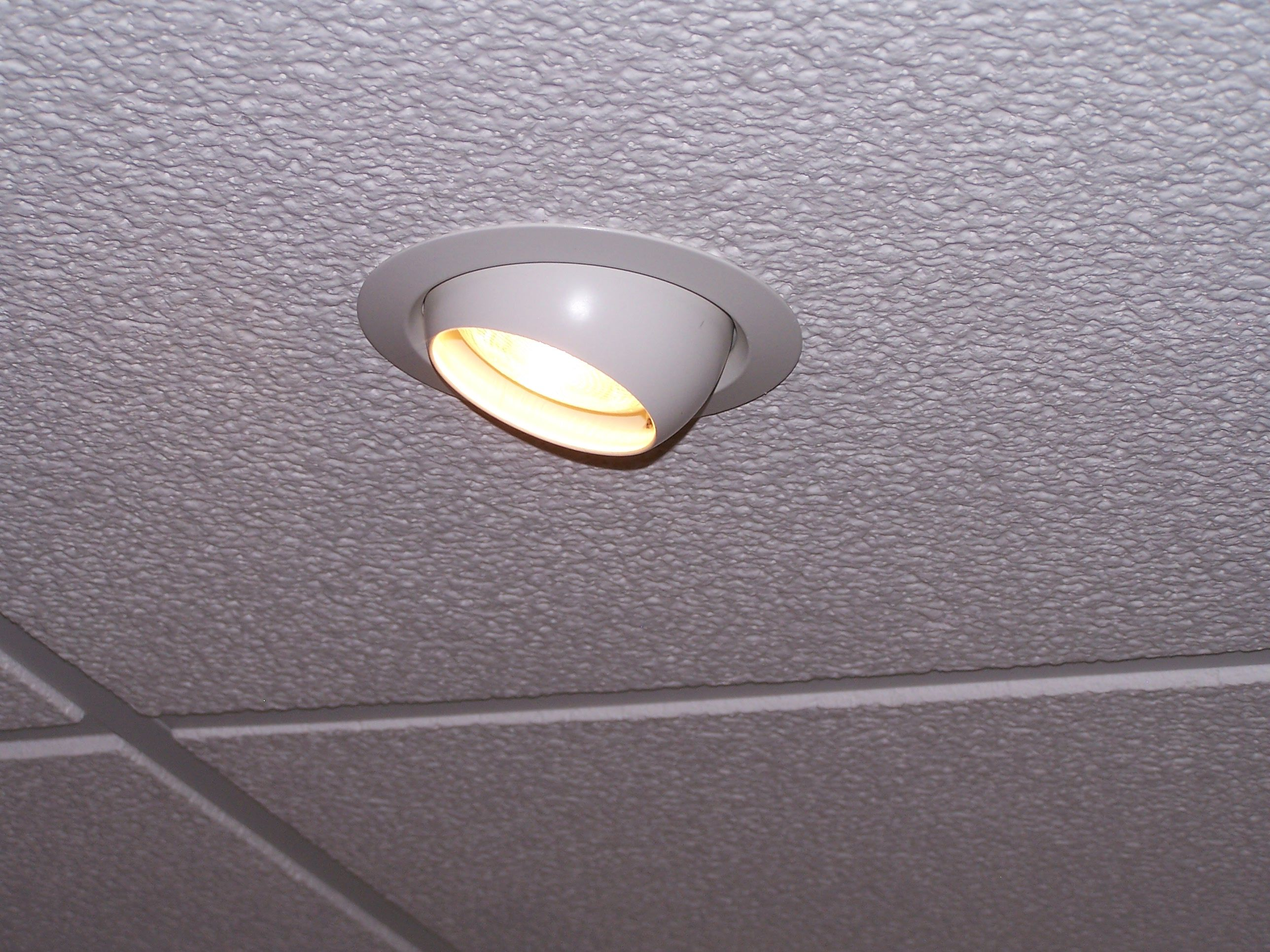 Recessed Lighting Fixtures In Suspended Ceiling Systems