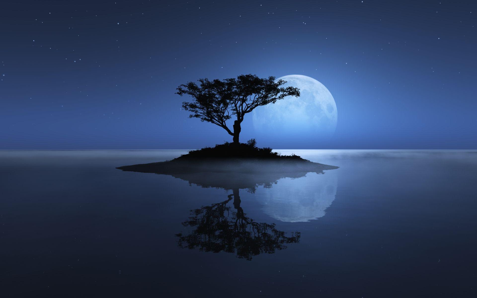 Tree....