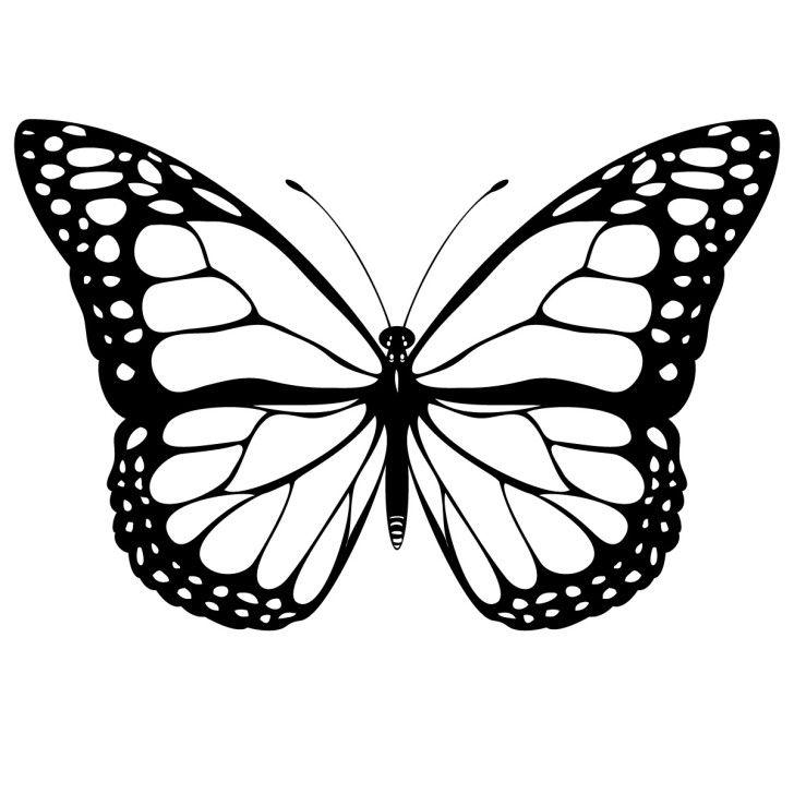 Monarch Butterfly Clip Art Free 10