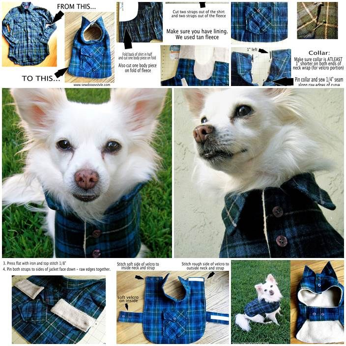 DIY Dog Coat from an Old Wool Shirt